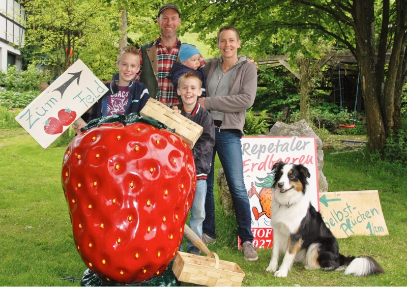Familie Korte Niederhelden - Erdbeeren