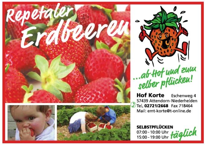Repetaler Erdbeeren