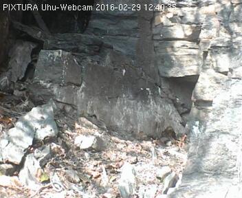 Uhu SWR-Webcam