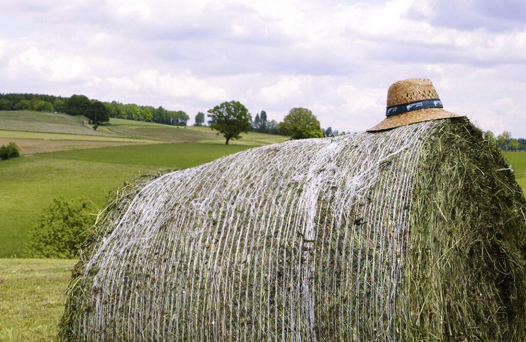 Bauernhofidylle in Bebbingen: Landlust in seiner schönsten Form.
