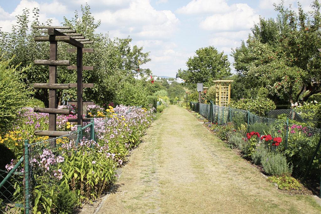 Gartenfreunde - WOLL Sauerland