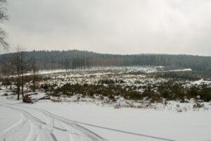 landesbetrieb-wald-holz-nrw-20 - Jahrespressegespräch des Forstamtes Oberes Sauerland