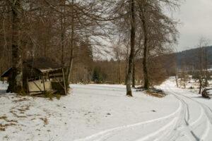 landesbetrieb-wald-holz-nrw-22 - Jahrespressegespräch Forstamt Oberes Sauerland
