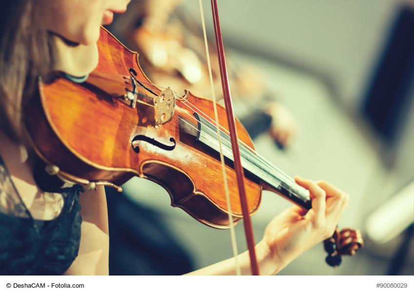 WOLL Sauerland Violine