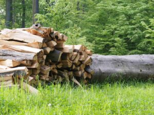Brennholt aus dem heimischen Wald