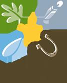 logo_lennestadt
