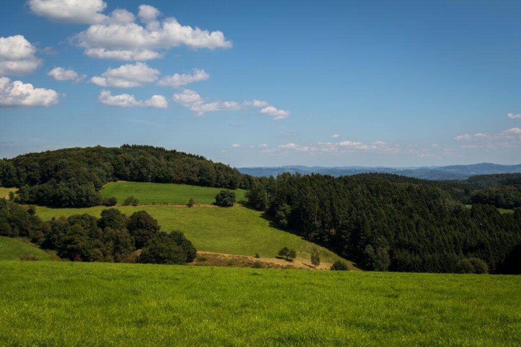 Plettenberg-Sonneborn
