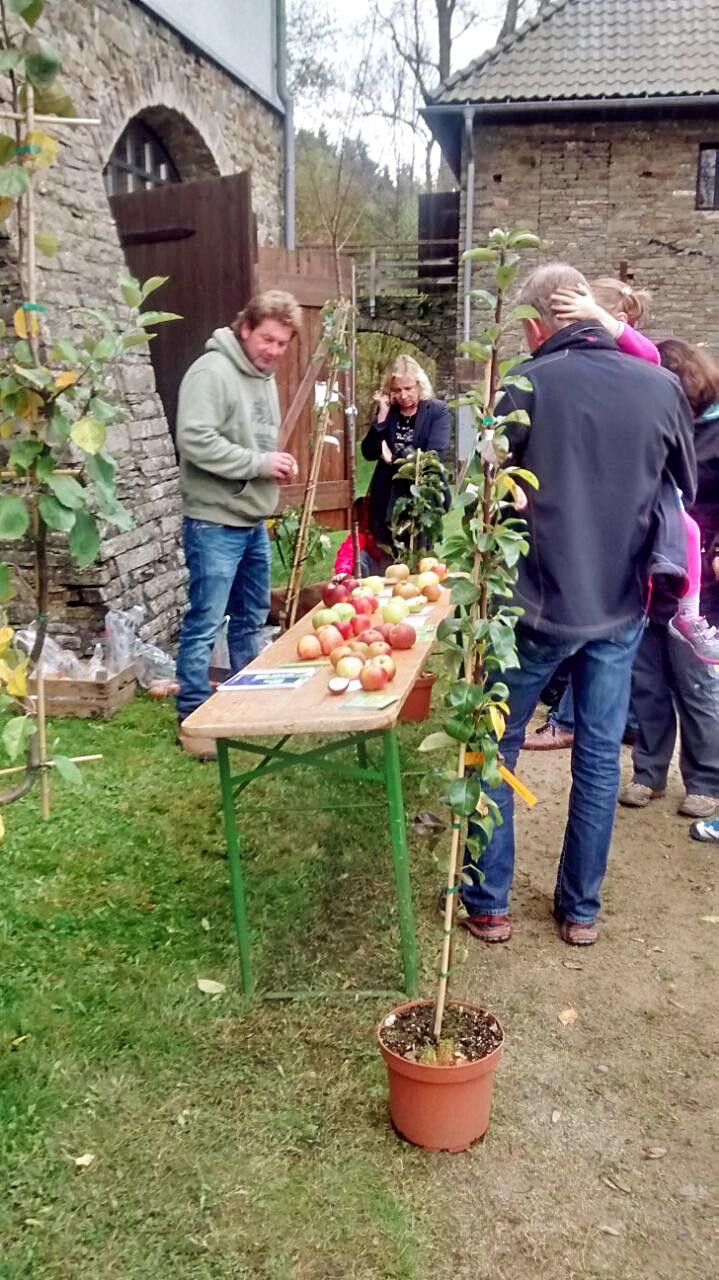 Apfelfest - Wendener Hütte