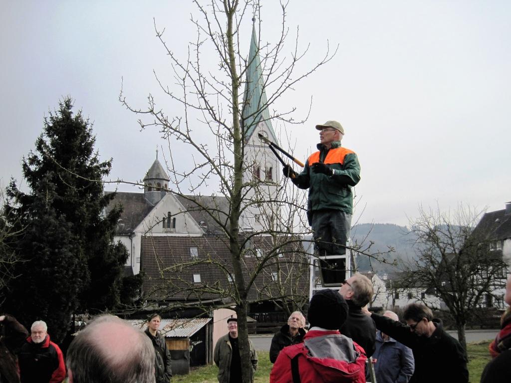 NABU Obstbaumschnittkurs Olpe biologisch