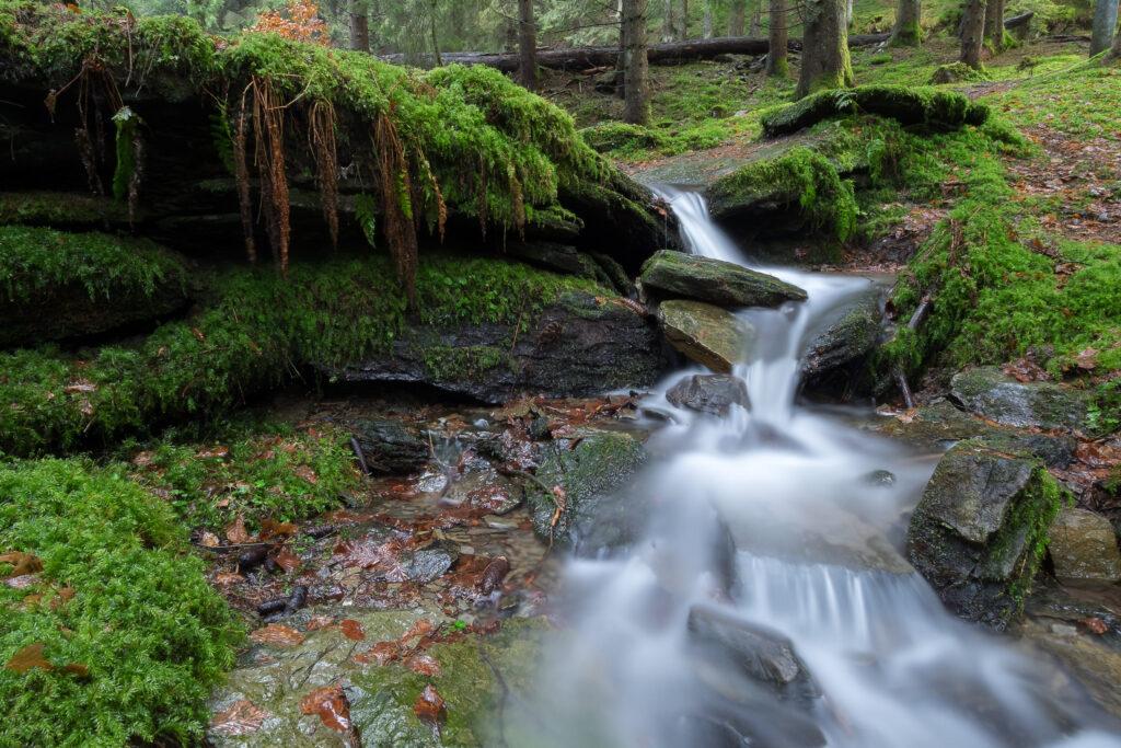Seen, Bächen, Flüssen und Quellen in der Region Foto: Klaus-Peter Kappest
