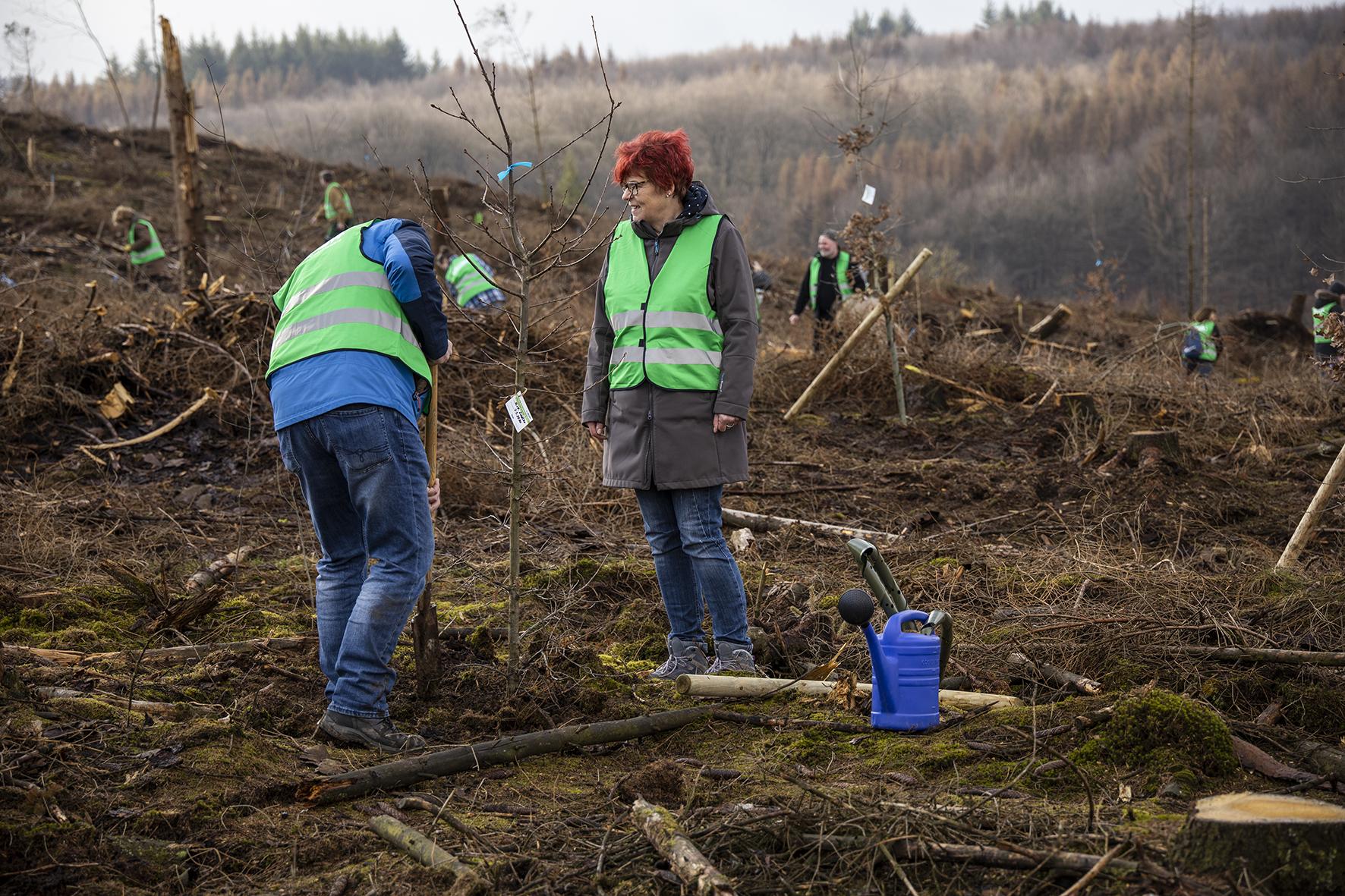 Bürger pflanzen und bewässern ihr Bäumchen; Foto: Sabrinity
