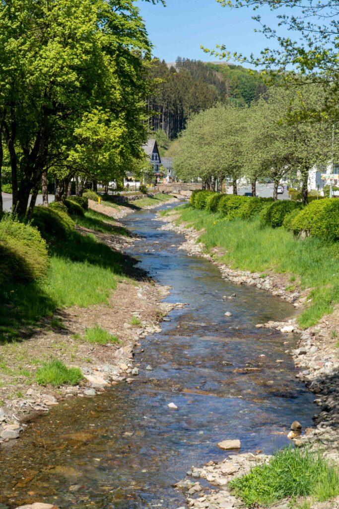 Die Renaturierung der ValmeEin lebendiger Fluss fließt wieder durch Ramsbeck
