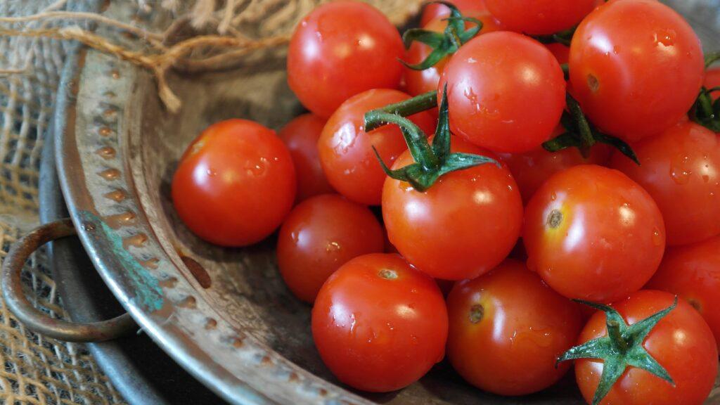 Tomaten – rot, rund, köstlich