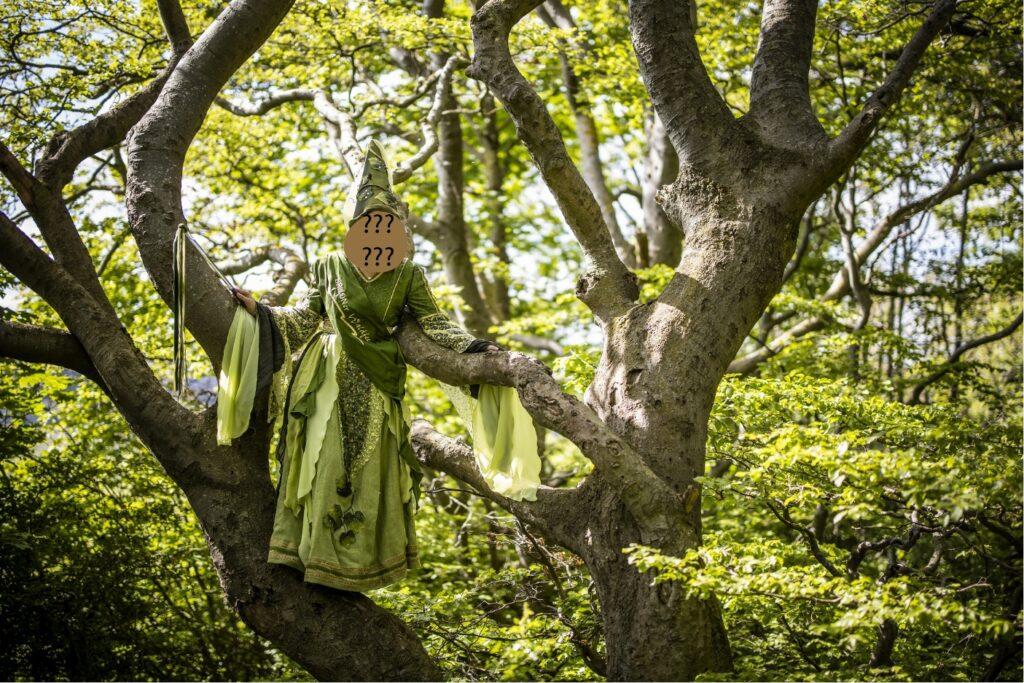 Wer wird die 17. Briloner Waldfee? Das Geheimnis wird endlich am Freitag, 30. Oktober 2020 gelüftet – jedoch nur online. Foto: Sabrinity