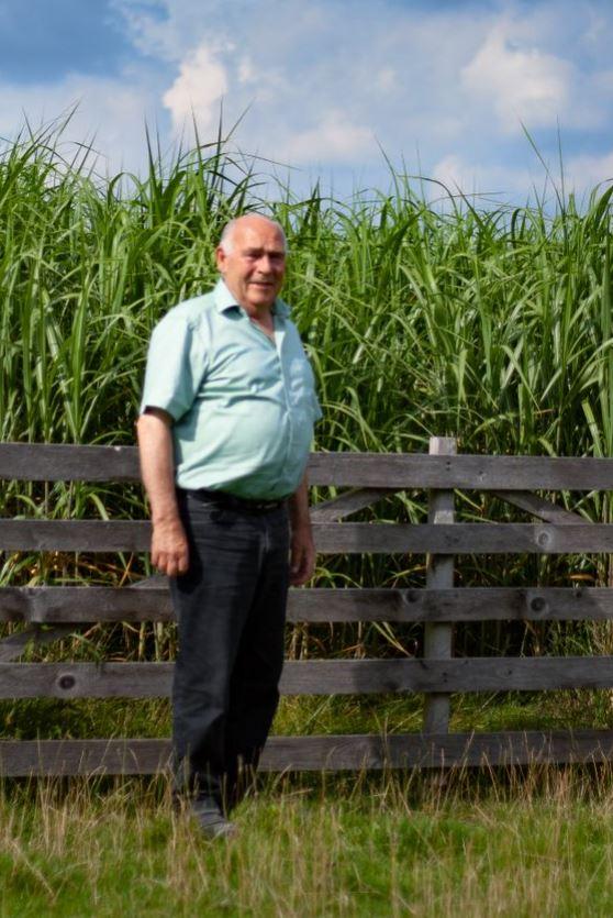 So hoch ist das Gras Anfang August 2020. Es wird eine sehr gute Ernte im kommenden Jahr, freut sich Franz-Josef Witteler. Foto: Silvia Padberg