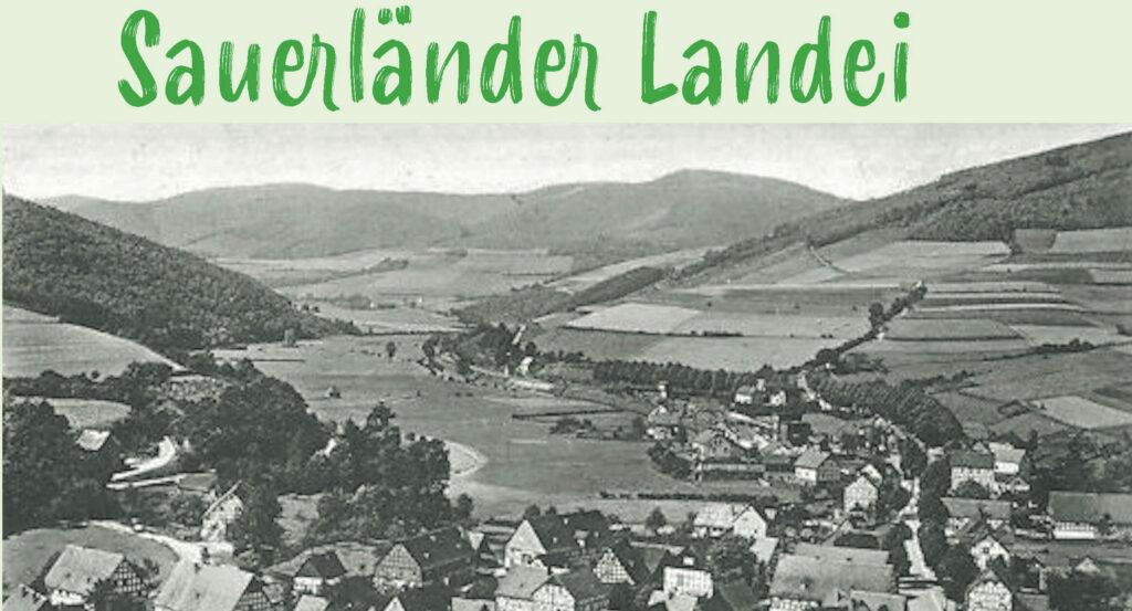 Sauerländer Landei Cover