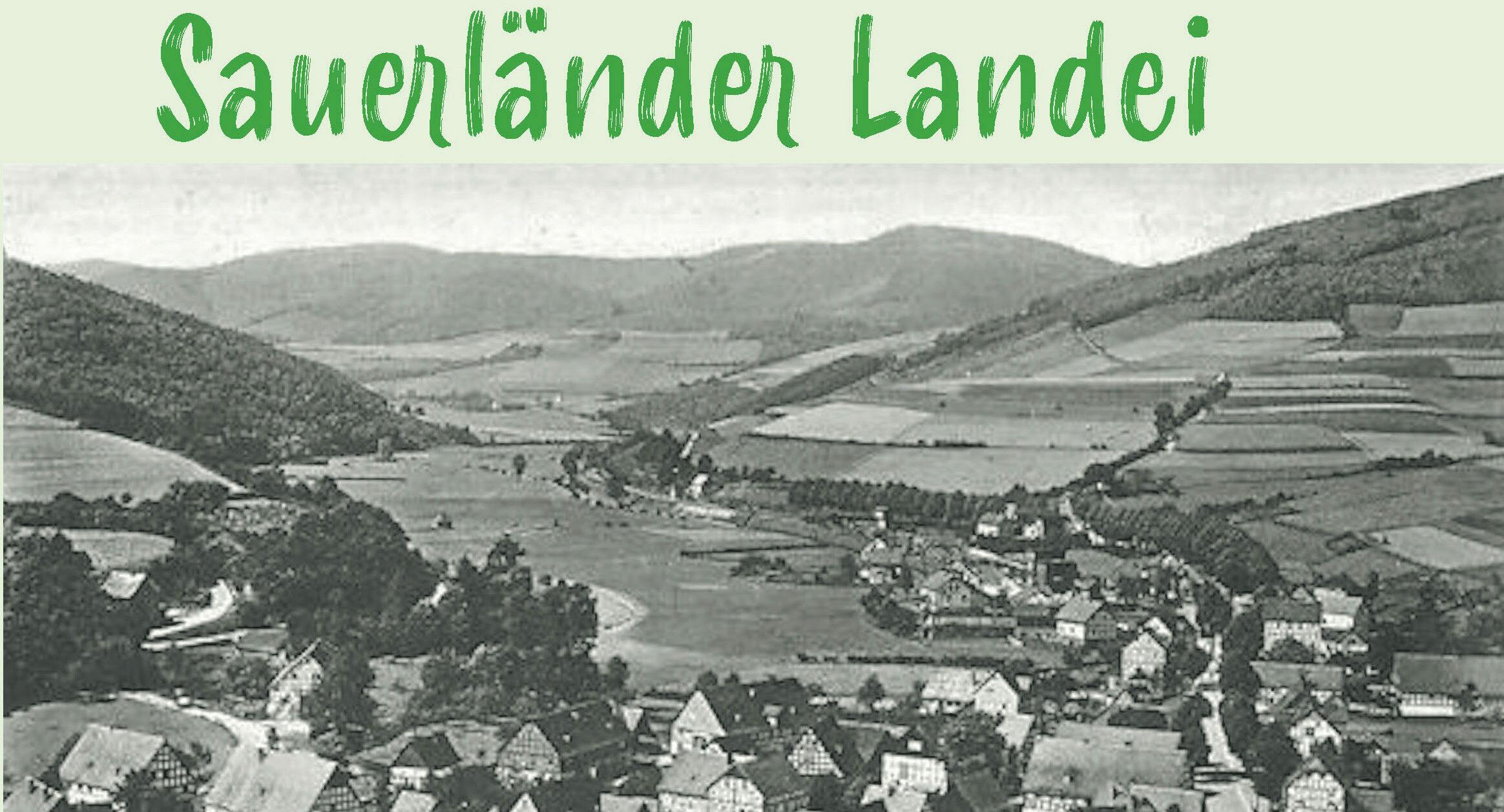 Buch Sauerländer Landei