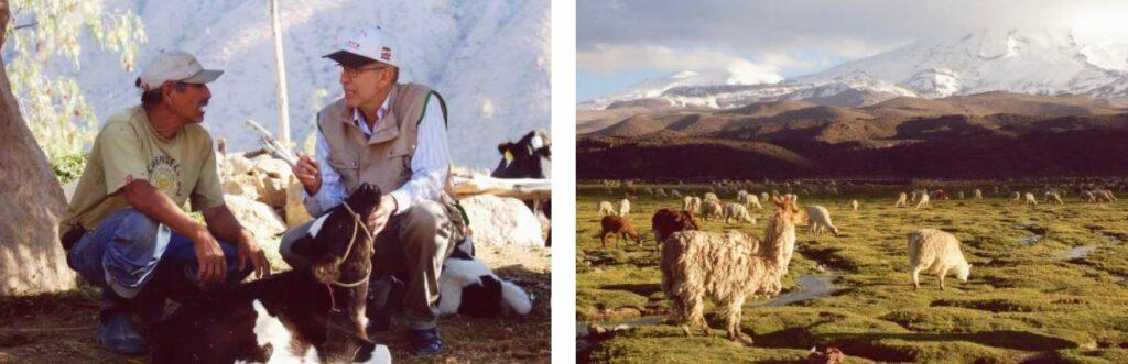 Heinz Stachelscheid unterwegs als Tiermediziner in den Anden.
