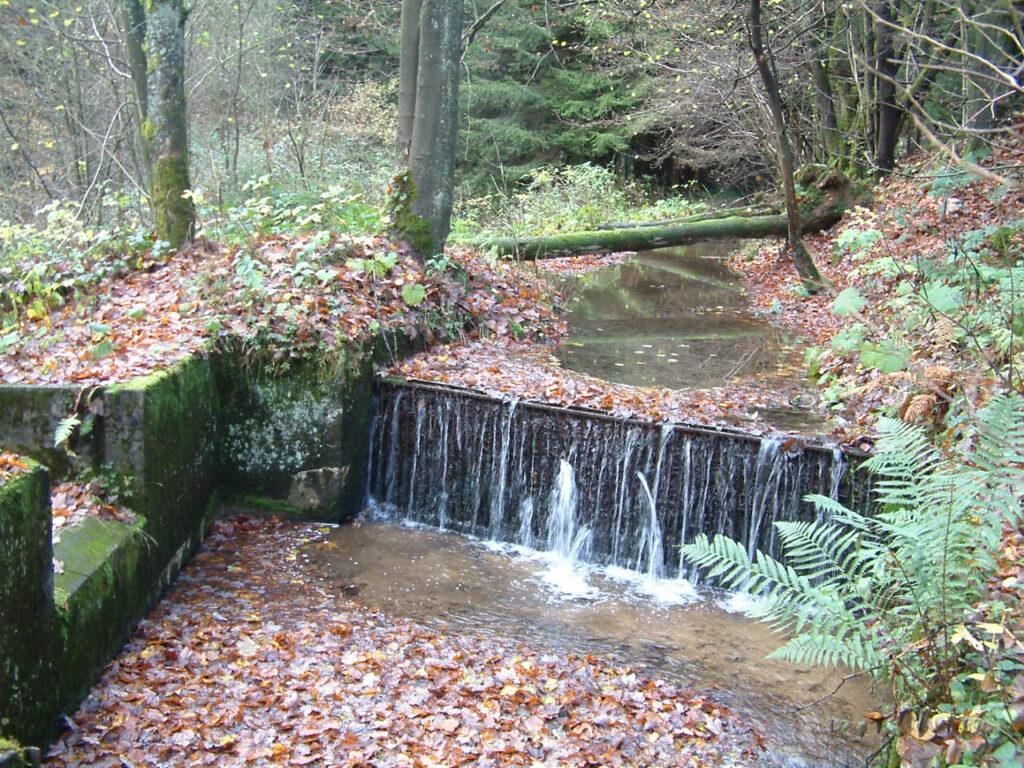 Mitten im Wald gelegen, ist die Gefahr groß, dass sich das Laubgitter im Krenkelbach vor dem Aquädukt schnell zusetzt.