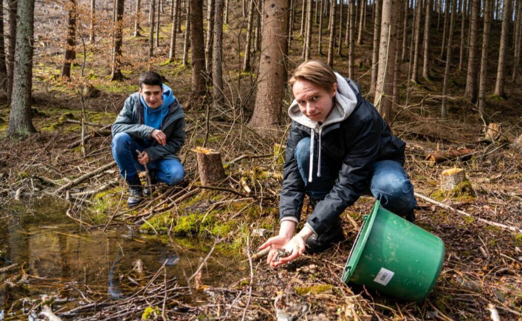 In der Natur im Einsatz: Die Bufdis Max Luca Köhler (links) und Söncke Jansky setzen eine Kröte an ihrem Laichplatz ab.