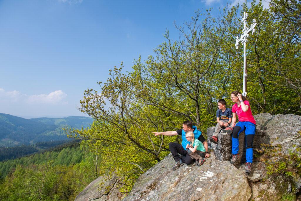 Wald beim Heiligen Born / Alpenhaus und Rinsleyfelsen